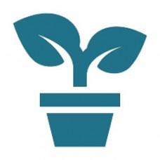 Seracılık ve Süs Bitkileri