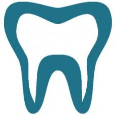 Dişçilik ve Ortodontistlik
