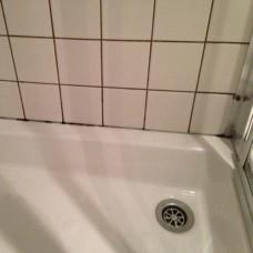 AKS Duşakabin ve Banyo Temizleyici