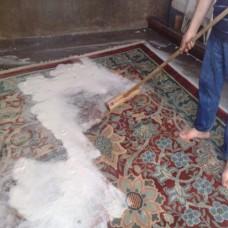 CARPET CLEANER Halı ve Döşeme Temizleyci