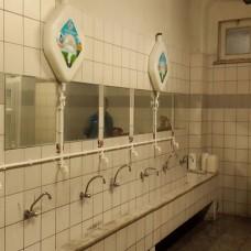 SOFT N PURE CLEAN Konsantre Çok Amaçlı Köpük Sıvısı